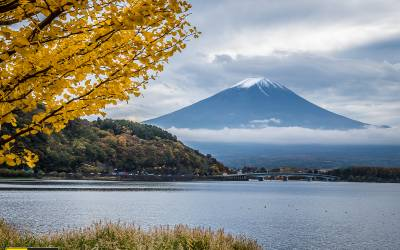Autumn in Japan by #2 – ใบไม้เปลี่ยนสี – ราตรีในโตเกียว และอภิมหา Outlet